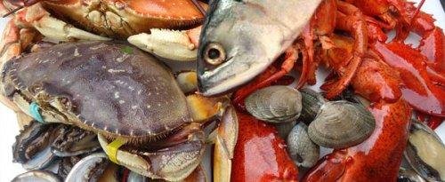 Los beneficios de comer pescado